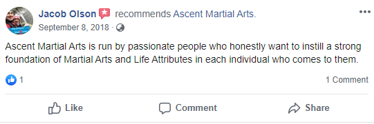 Adult 3, Ascent Martial Arts in Wilsonville, OR