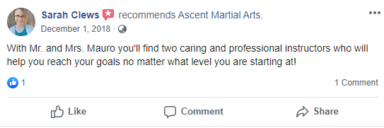 Adult 4, Ascent Martial Arts in Wilsonville, OR